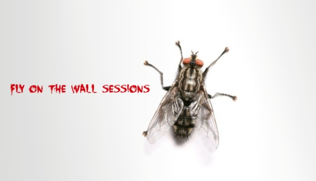 Fly-on-the-wall session