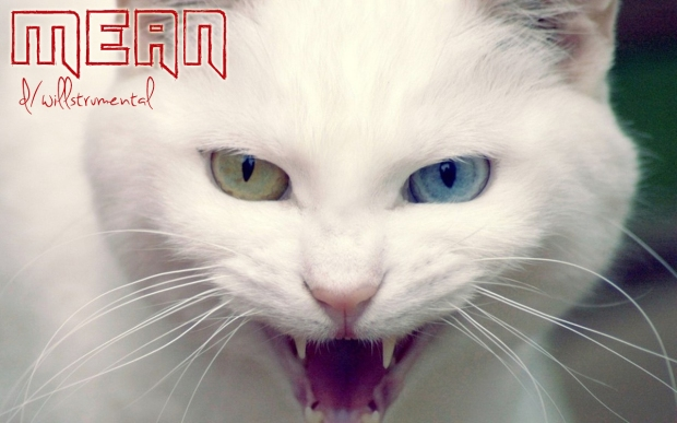 mean_angry_cat_pc_wallpaper-1280x800 copy